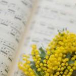 Menù speciale per la Festa della Donna in Assisi da festeggiare al Ristorantino del Colle