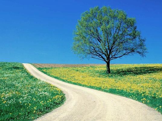 25 Aprile in Assisi - Vacanza di Primavera